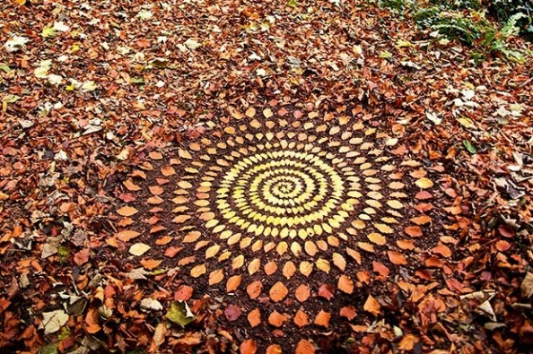 art-using-autumn-leaves-created-by-James-Brunt-c3574f3